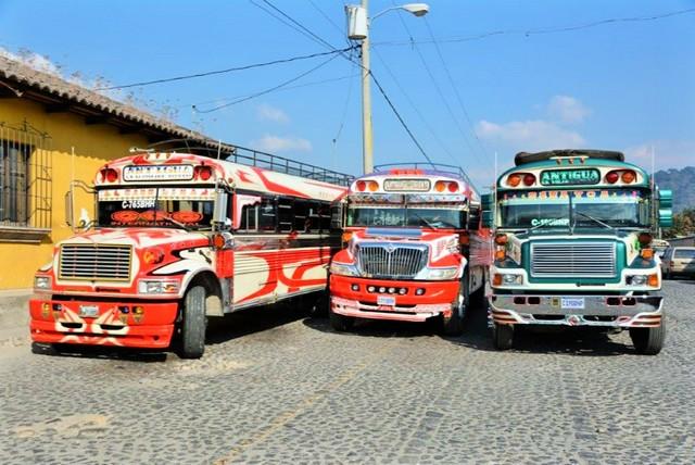 Busse (3)