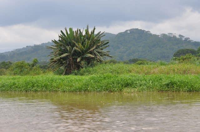 costarica (2212)