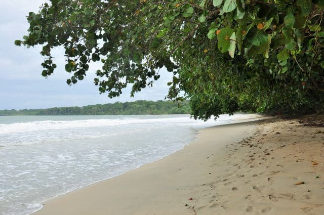 costarica (798)
