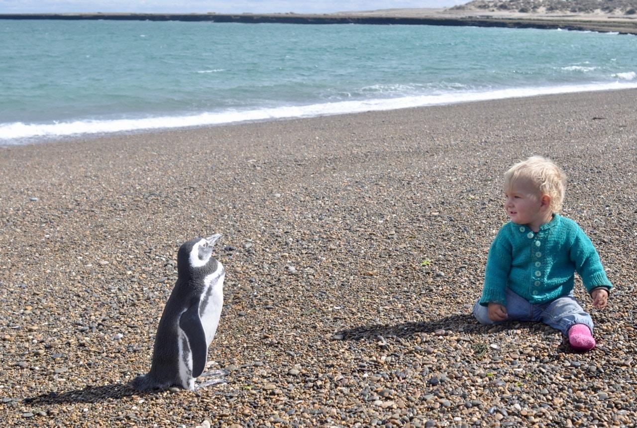 Levi mit Pinguin