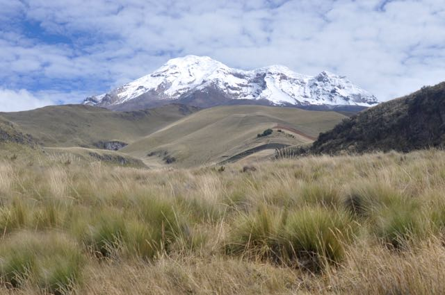 Ecuador (37)